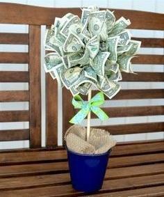 planta dinero